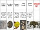 Fossils Card Sort for Science Interactive Notebooks