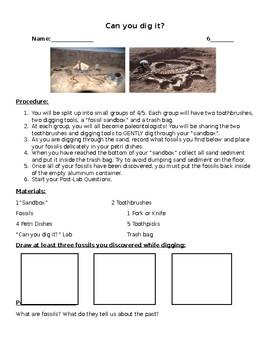Fossils Digging Lab