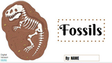 Fossils Digital Activity