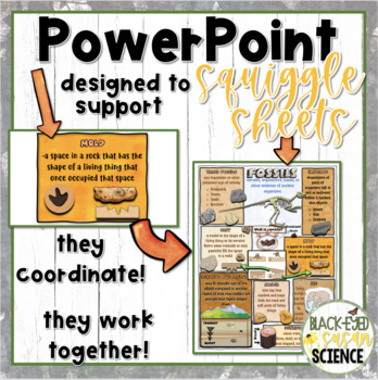Fossils Squiggle Sheets---POWER POINT