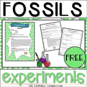 Fossils Experiment Freebie