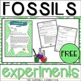 Fossils Worksheet Worksheets Experiments Freebie