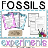 Fossils Worksheet Experiments