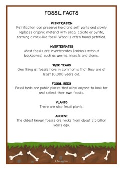 Fossils Fact Cards