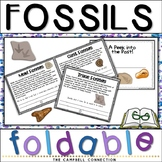 Fossils Worksheets Foldable Book
