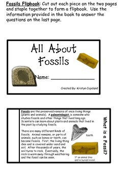 Fossils Flipbook  (Interactive Notebooks)