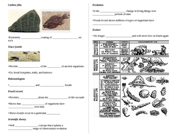 Fossils- Guided Notes