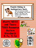 Fossils:  Hiding in Sedimentary Rock
