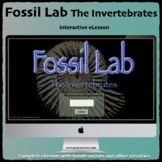 Fossils Interactive HTML5