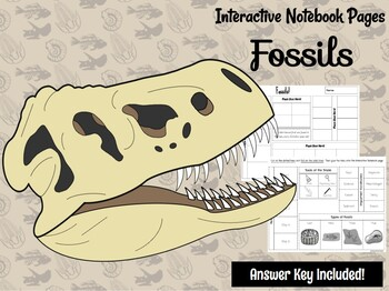 Fossils Interactive Notebook Page  **EDITABLE**