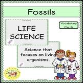 Fossils Vocabulary Cards