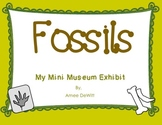 Fossils (My Mini Museum Exhibit)