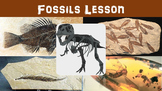 Fossils No Prep Lesson with Power Point, Worksheet, and Paleontologist Activity