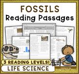 Fossils: Non-Fiction Reading Passages & Questions