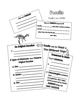 Fossils Notes with Editable Version