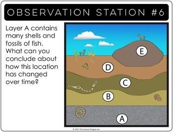 Fossils Observation Stations