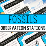 Fossils Observation Stations