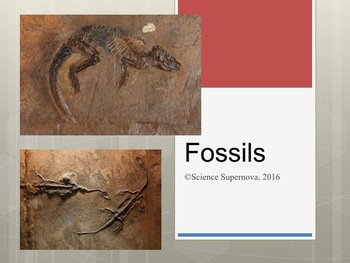 Fossils PPT with Student Notes