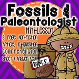 Fossils & Paleontologist Mini Lesson No Prep!