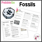 Fossils PebbleGo research brochure