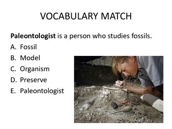 Fossils Power Point and Foldable