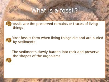 Fossils PowerPoint & Scaffolded Notes