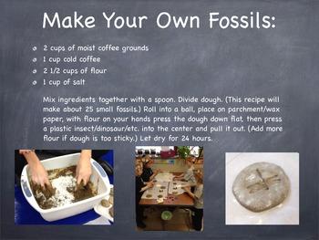 Fossil PowerPoint & Activities