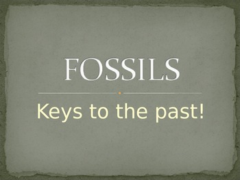 Fossils PowerPoint presentation