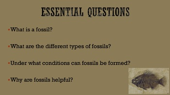 Fossils (Powerpoint)