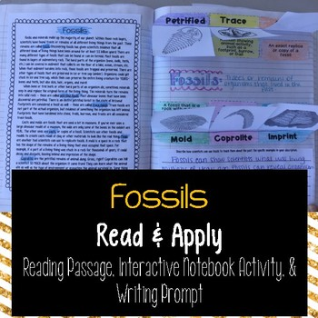 Fossils Reading Comprehension Interactive Notebook