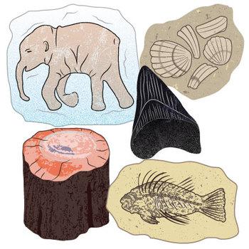 Fossils & Remains Clip Art