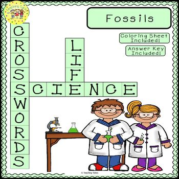 Fossils Science Crossword Puzzle Coloring Worksheet Middle School