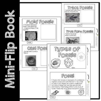 Fossils Science Resources