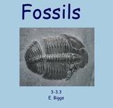 Fossils - Smartboard Lesson