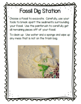Fossils Stations