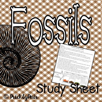 Fossils Study Guide