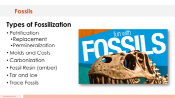 Fossils - Supplemental Lesson - No Lab