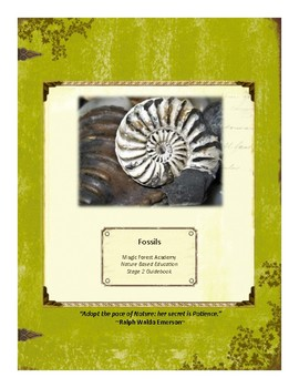 Fossils Themed Nature Education Unit-Stage 2 (Magic Forest Academy)