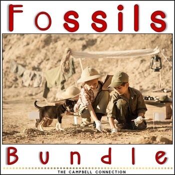 Fossils Bundle