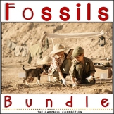 Fossils Worksheet Bundle