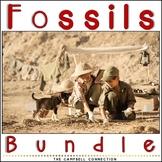 Fossils Worksheets Bundle