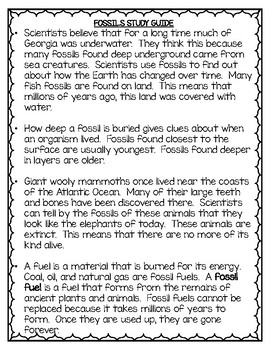 Fossils Unit - 3rd Grade Science Resources
