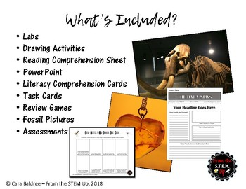 Fossils Unit Bundle - literacy and science