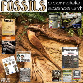 Fossils Unit: Games, Activities, & Assessments