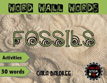 Fossils Vocabulary Word Wall Words & Vocabulary Activities