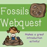 Fossils Webquest