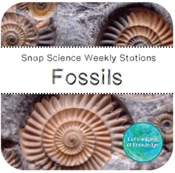 Fossils Science Stations