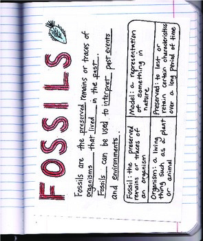 Doodle Notes - Fossils - What Lived Before - Interactive Notebook Foldable