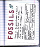 Fossils - What Lived Before - Interactive Notebook Foldabl