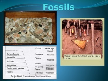 Fossils: What Where How?